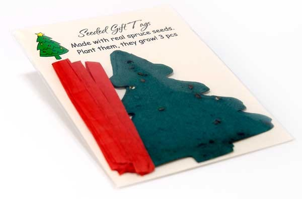 Celebrate this Christmas with Organic Spruce Tree Greeting Cards